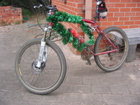 Mountain Bike Tinsel