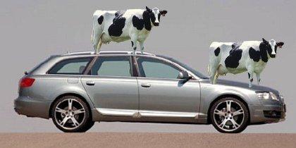 milk car ton